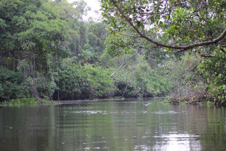 Rio Preguiças em Lençóis Maranhenses